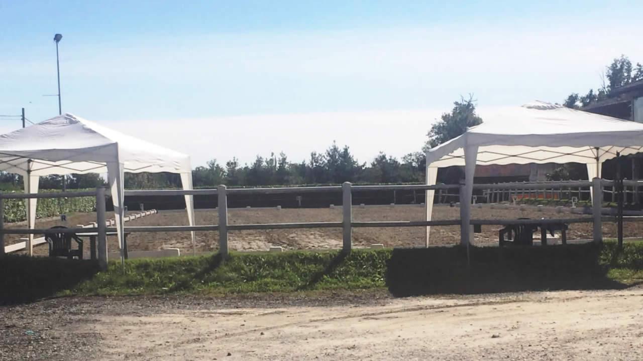 Centro Equestre Mottalciata - Home Page Slider 06