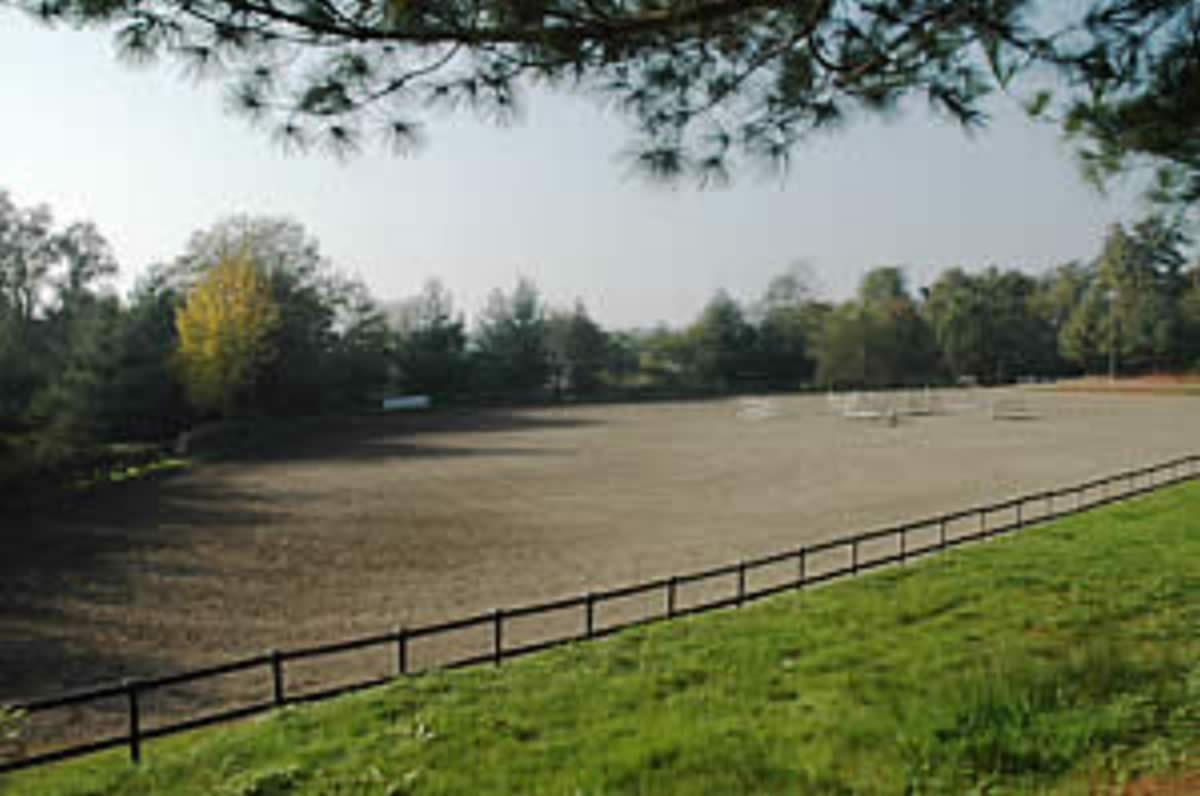 Centro Equestre Mottalciata - La Struttura Slide 06kj