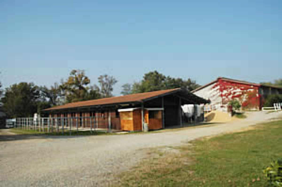 Centro Equestre Mottalciata - La Struttura Slide 07kj