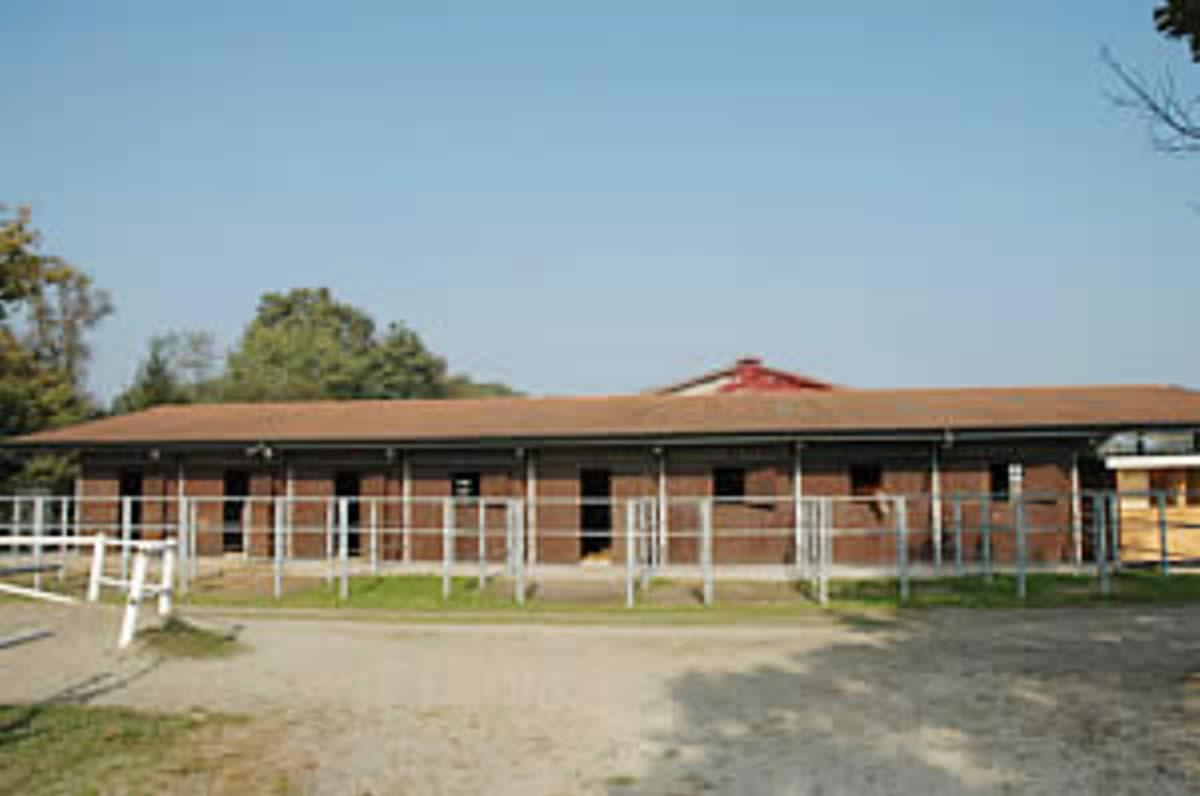 Centro Equestre Mottalciata - La Struttura Slide 09 kj