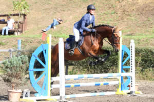 Centro Equestre Mottalciata - Call to Action 02