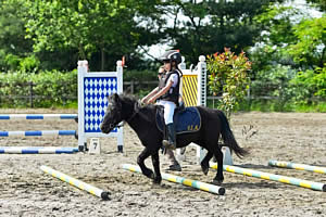 Centro Equestre Mottalciata - Call to Action 03