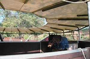 Centro Equestre Mottalciata - La Struttura Slide 05