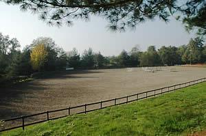 Centro Equestre Mottalciata - La Struttura Slide 04
