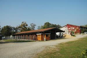 Centro Equestre Mottalciata - La Struttura Slide 01