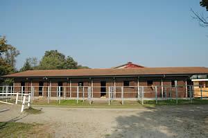 Centro Equestre Mottalciata - La Struttura Slide 02