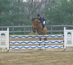 Centro Equestre Mottalciata A.s.d. - Marta Nesci